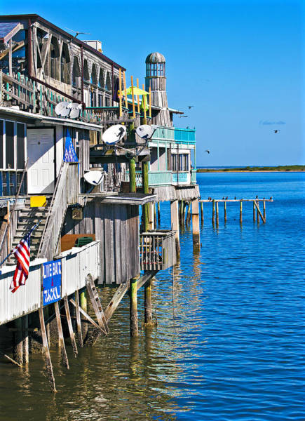 Poster featuring the photograph Always Blue - Cedar Key by Donna Proctor