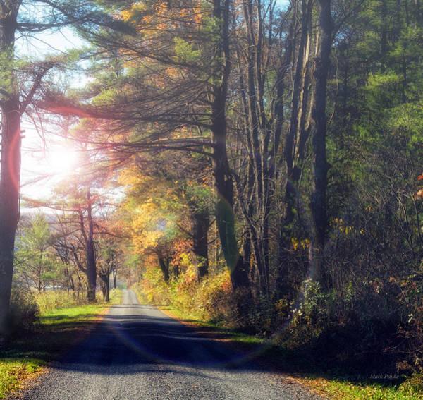Autumn Road Poster