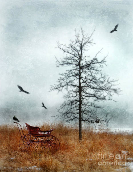 Baby Buggy By Tree With Nest And Birds Poster