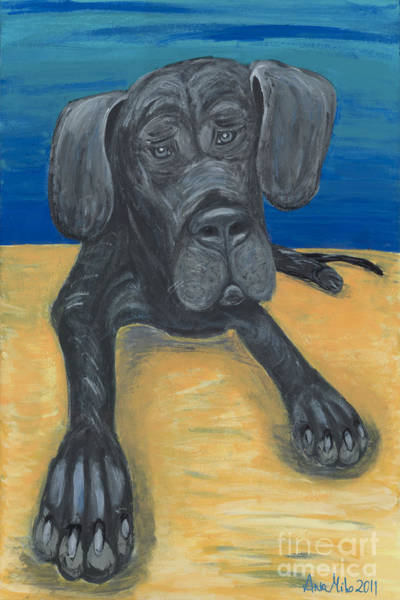 Blue The Great Dane Pup Poster