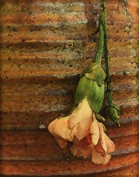Albuquerque, New Mexico - Carnation Poster