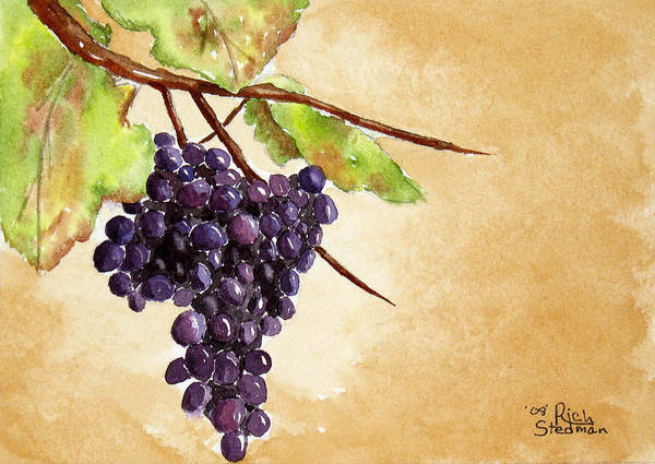 Poster featuring the painting Chris' Grapes by Rich Stedman