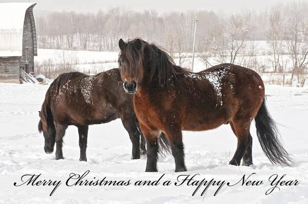 Christmas 8 Poster