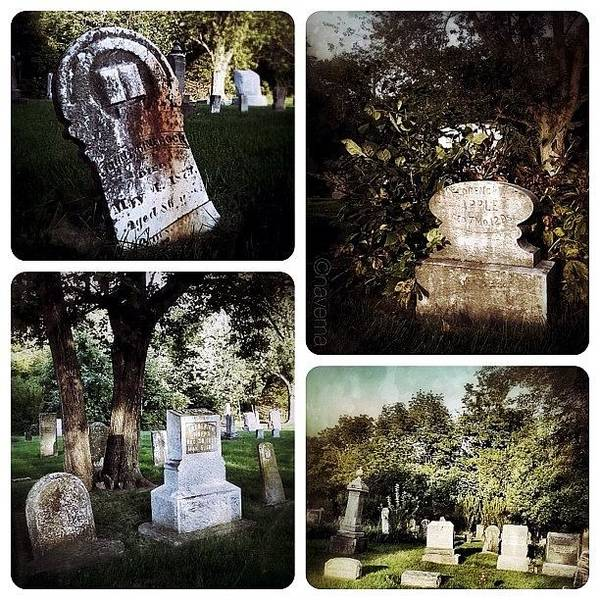 Country Graveyard Poster