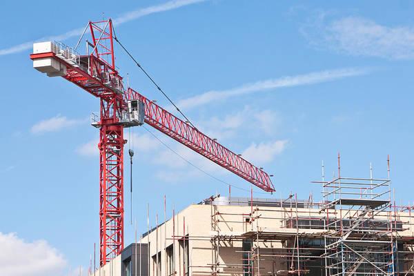 Crane Poster