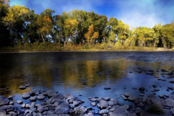 Early Fall At The Headwaters Of The Rio Grande Poster