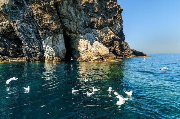Elba Island - Seagulls Coast 3 - - Costa Dei Gabbiani 3 - Ph Enrico Pelos Poster