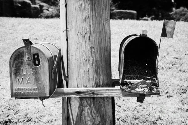 empty old used american private mailboxes one with birdsnest in Lynchburg tennessee usa Poster