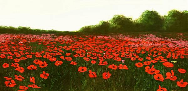 Poster featuring the painting Fine Art Oil Painting Poppies Emerald Isle by G Linsenmayer