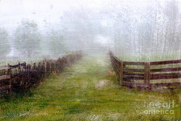 Foggy Fence Poster