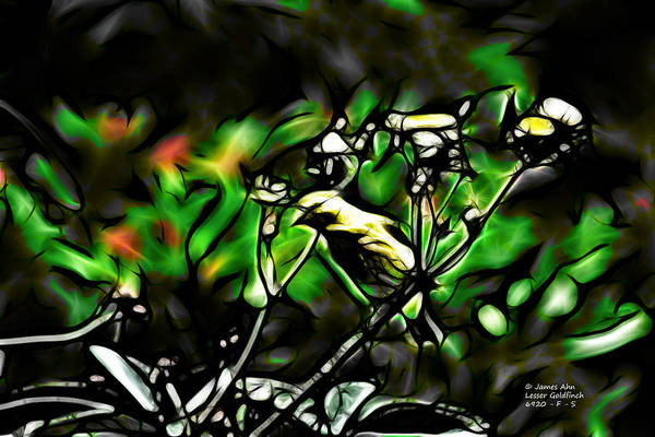 Fractal S - Take A Look - Lesser Goldfinch Poster