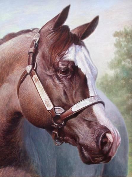 Horse Portrait 2 Poster