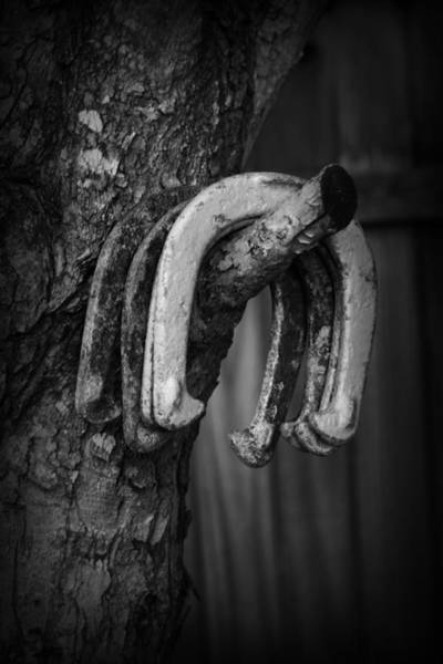 Horseshoes Poster