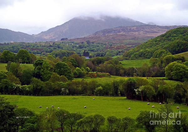 Irish Countryside II Poster