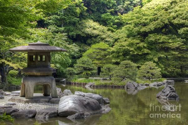 Poster featuring the photograph Japanese Garden by Tad Kanazaki