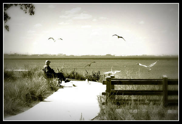 Lakeside Solitude Poster