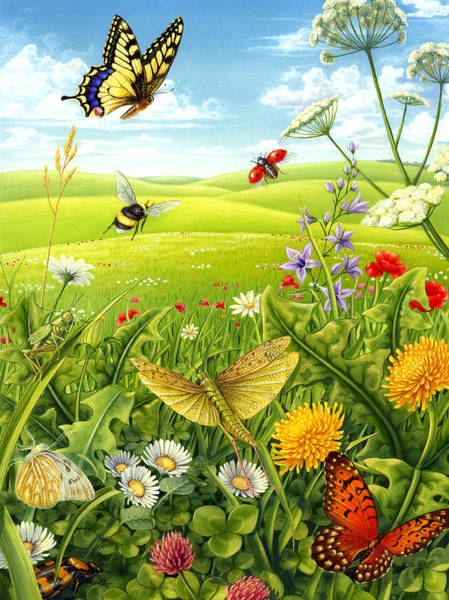 Living Meadow Poster