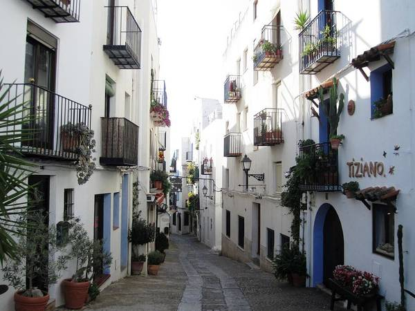 Lovely Narrow Street And Balconies Decorated With Plants In Peniscola Spain Poster