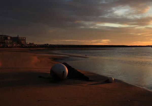 Low Tide At Dawn  Poster