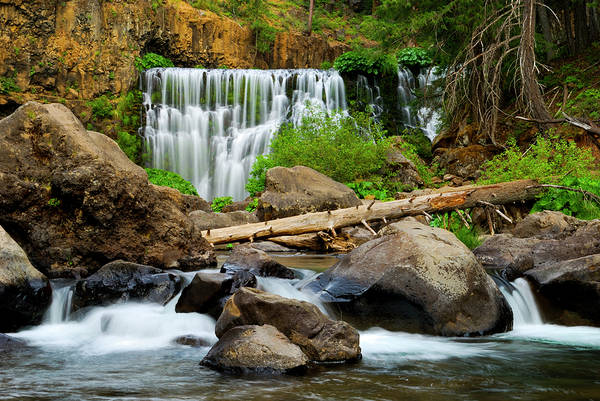 Middle Falls Of The Mccloud River Poster