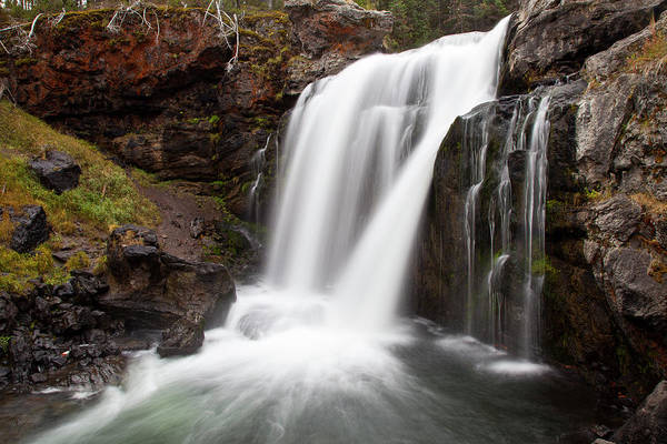 Moose Falls In Yellowstone National Park Poster