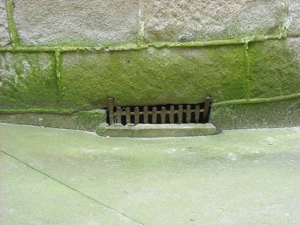 Mossy Grate Poster