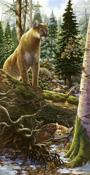 Mountain Lion With Fawn Poster