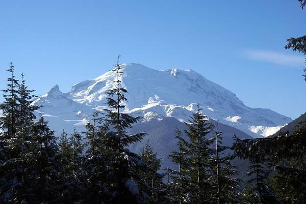 Mt. Rainier Poster
