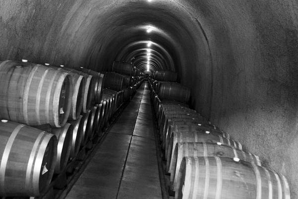 Napa Wine Barrels In Cellar Poster