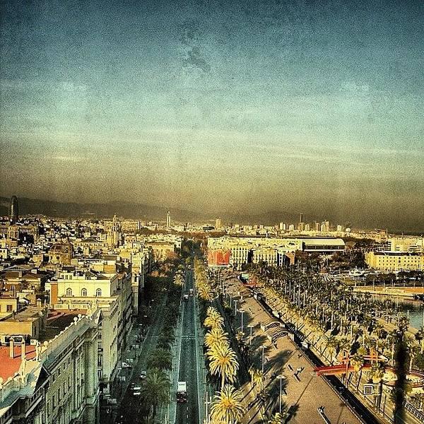 Passeig De Colom - Barcelona Poster