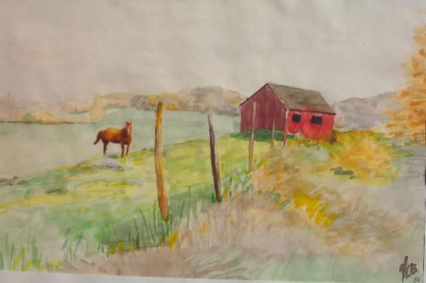 Pasture In Lagrangeville Poster