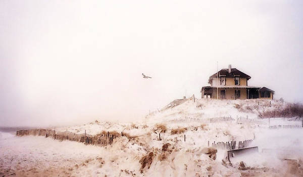 Plum Island Winter Poster