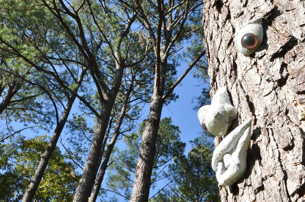 See Da Tree Poster