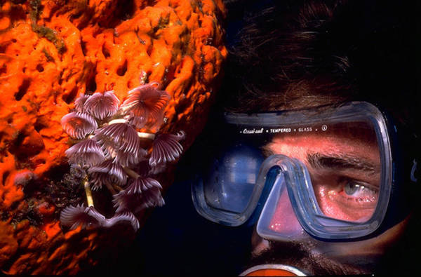 Self Portrait On Snowfields Reef Poster