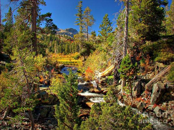 Sierra Nevada Fall Beauty At Lily Lake Poster