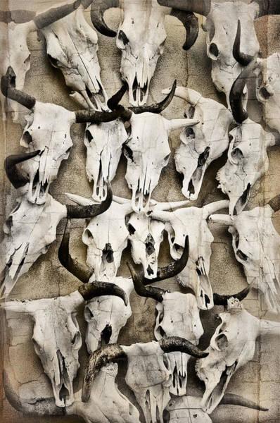 Skull Art Poster