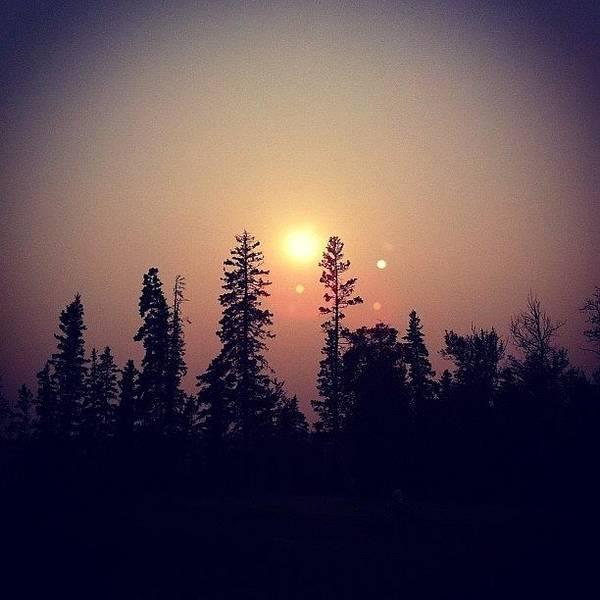 #smoky #smoke #sun #sunporn #trees #sky Poster
