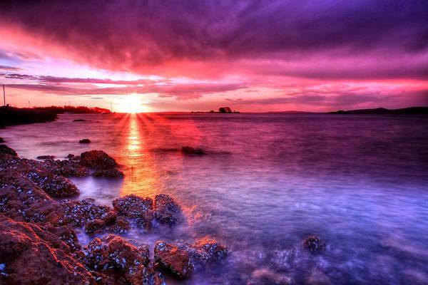 Snapper Island Sunset Poster