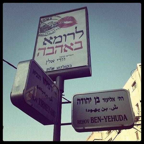 Special For @seagullgull #israel Poster