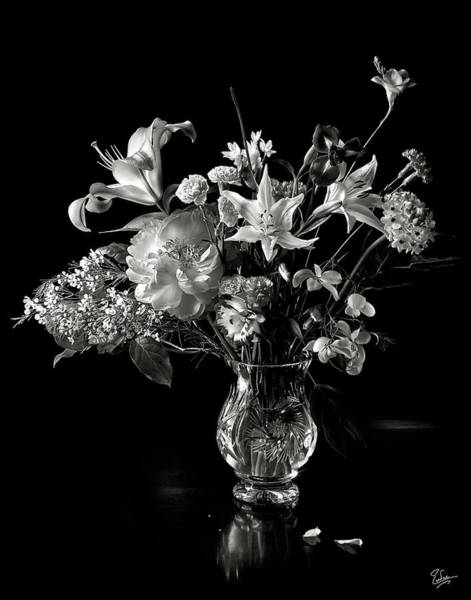 Still Life In Black And White Poster