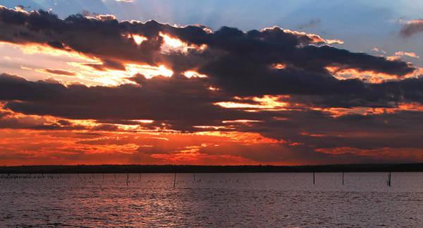 Swan Bay Sunset Poster