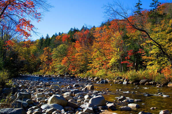 Swift River In Autumn Poster