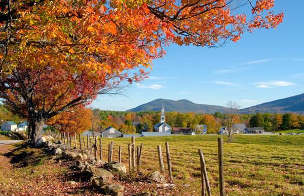 Tamworth Trees Autumn Poster
