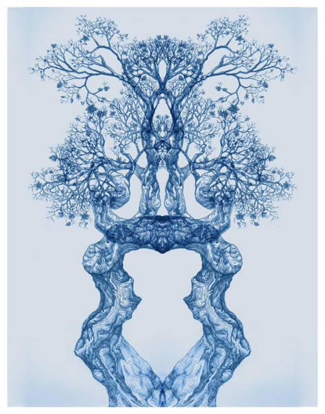 Tree 14 Blue 2 Poster
