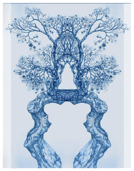 Tree 14 Blue 8 Poster