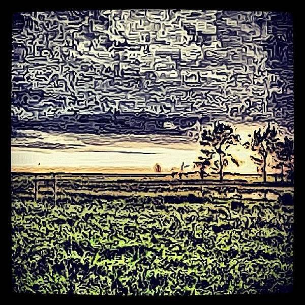 #trees #northdakota #nature #sky Poster