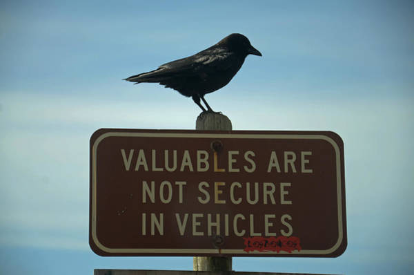 Valuables Are Not Secure Poster