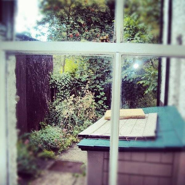 View From My Window, #cambridge #view Poster