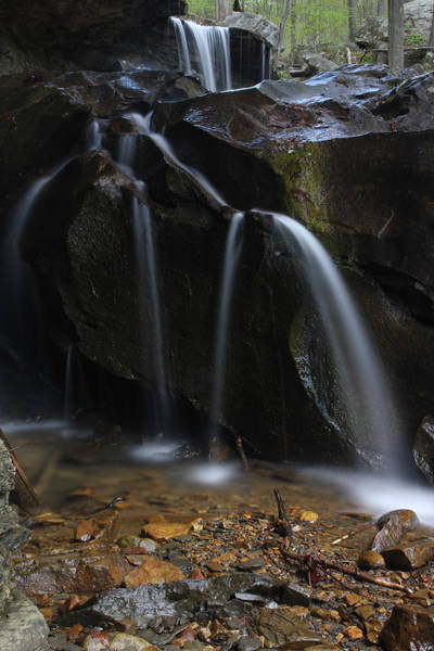 Waterfall On Emory Gap Branch Poster