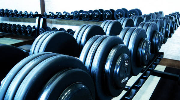 Weights Horizontal Poster